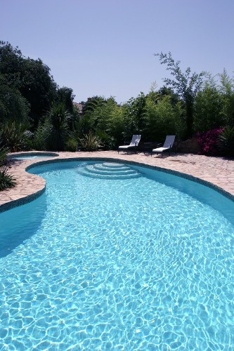 What S So Great About Kidney Shaped Pools Pool Pricer