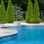 Inground pool surrounded by evergreen trees